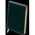 Ежедневник недатированный Buromax Boss, А4, 288л, натуральная кожа, зеленый