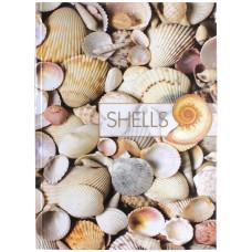 """Блокнот Optima """"Рисунки природы"""" Shells, А4, 80 л., боковая спираль"""