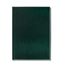 """Блокнот Economix """"Змея"""", А6, 80 л., шитье на нитку, зеленый"""