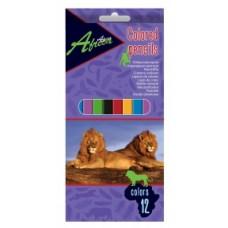 """Карандаши цветные Economix """"Africa"""", 12 цветов"""