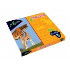 """Пластилин Economix """"Africa"""", 10 цветов, 200г, картон"""