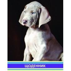 """Дневник школьный Cool for school """"Щенок"""", 48 л."""