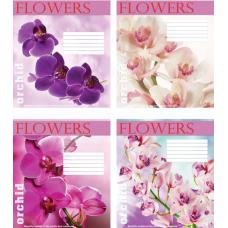 """Тетрадь Мрії збуваються """"Flowers"""" 18 листов, клетка"""