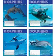 """Тетрадь Мрії збуваються """"Dolphins"""" 18 листов, клетка"""