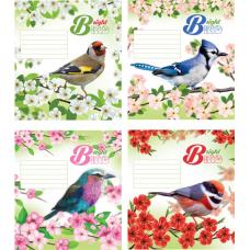 """Тетрадь Мрії збуваються """"Bird"""" 24 листа, клетка"""