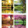 """Тетрадь Мрії збуваються """"Nature"""" 60 листов, клетка"""